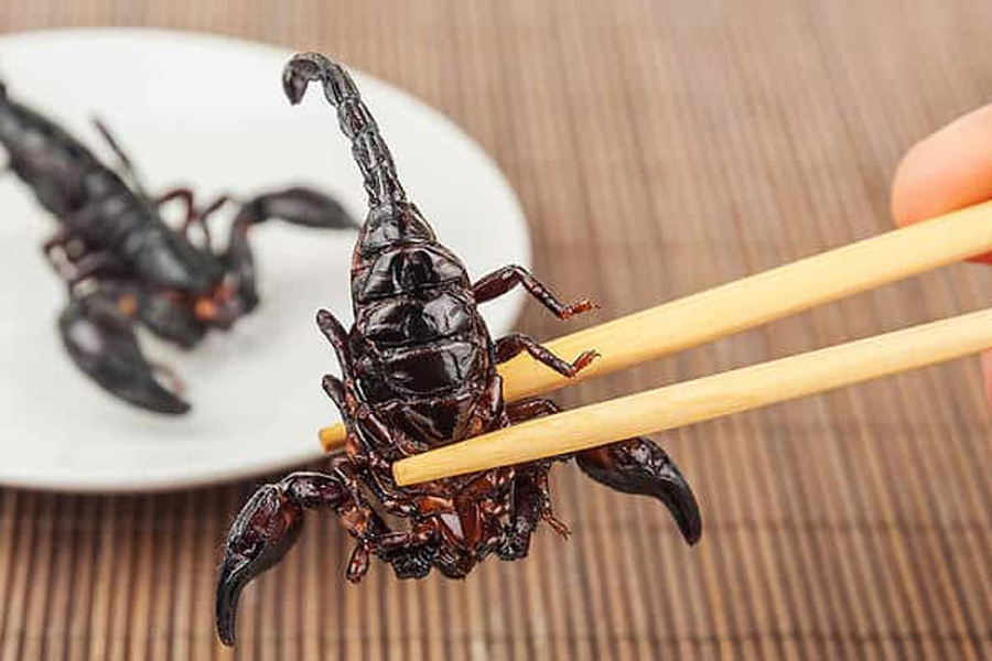 αηδιαστικά Street food disgusting street foods