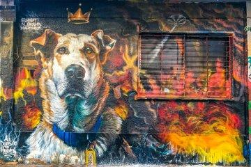 Street Art Δρομέας Street Art Athens