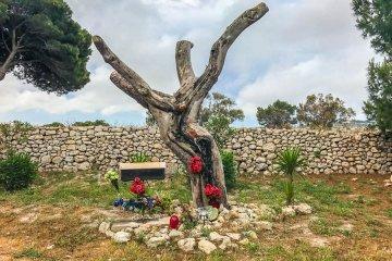 Το Δέντρο του Ιησού Jesus Tree